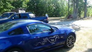 2013 Ford Mustang gt Coupe (2 door)