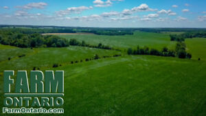 Very Productive Bareland in BLUEVALE! 85 Acres.