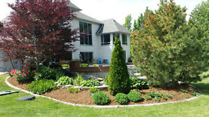 Landscaping / Yard Clean Ups for high end homes London Ontario image 2