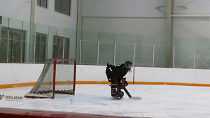 Goalie looking for a new team