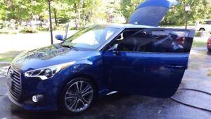 Gordons Auto Detailing & Tire Change Service MOBILE SERVICE
