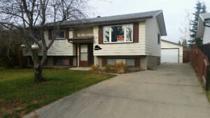 South East Edmonton - 1400 Bi Level house for sale by owner