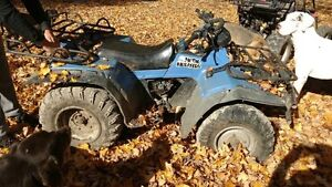 I have an atv and dune buggy for sale