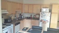 1 furnished bedroom for student or professional-Sep 1 Guelph