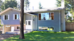 New Renovated house in South Surrey /White Rock