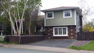 Short stay rental Restarting May 20th in St. John's,Nightly,week