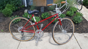 Vintage Womens Sekine Bike - Mint