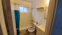 basement one bedroom apartment for rent
