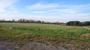 Beautiful country property, large barn and 2 bedroom house London Ontario image 2