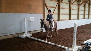 $452 inc hst summer overnight horse camp