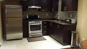 Brand New One Bedroom With A Full Washroom For Rent AJAX