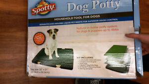 A POTTY PATCH FOR DOGS