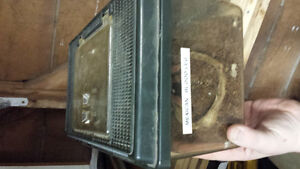 Yb female, male bumblebelly and a tarantula for sale London Ontario image 5