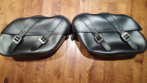 Triumph saddlebags!! Only $100 !!!