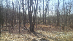 Build your dream home on 10.9 acres! 1395 Ritchie Road.