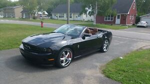 2011 Ford Mustang Convertible standard black full! 16900$ OBO