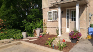 Beautiful 3 Bedroom End Unit  Upper Sherman Stonechurch Aug 1st