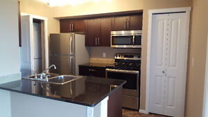 2 Bedroom + 2 Bath Brand new condo for rent,rent to sale or sale