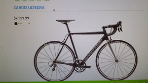 Brand new still in box Cannondale caad 12