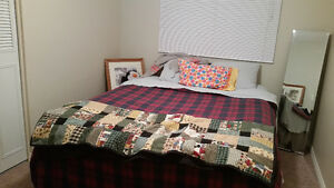 Room for rent -Millwoods