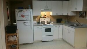 One bedroom basement suite for rent. Avalable February 1