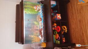 Aquarium tout inclu