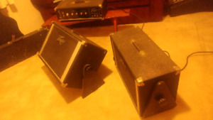 Peavey monitors with amp