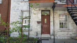 3500$ - Spacious 5 BR/Furnished/McGill ghetto/Plateau/Renovated