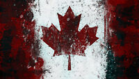 LOOKING FOR A PAINTER - CANADIAN FLAG IMAGE