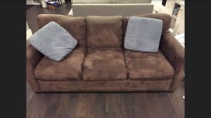 Sofa and love seat from The Couch Potato/Sofa Store
