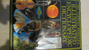 Webster's illustrated encyclopedic dictionary Hardcover – 1990
