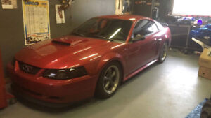 2001 Ford Mustang Cuir Coupé (2 portes)