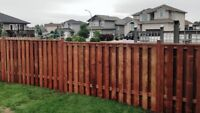THE FENCE MAN - call today 252- 3502