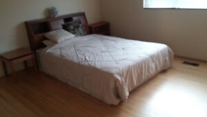 3 lovely rooms available