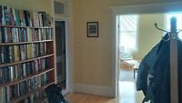 Sunny downtown large 1 bedroom for NOVEMBER 1