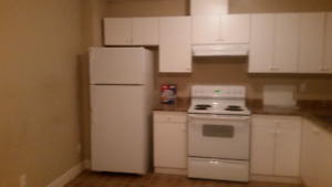 2 bedroom basement suite for rent in fleetwood
