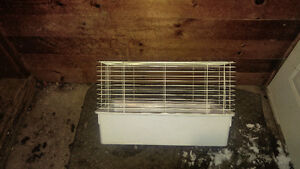 Rat or rodent cage and cedar shavings