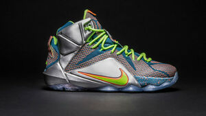 Nike Lebron James XII Trillion Dollar Man size 8.5