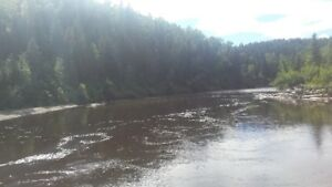 PLACER GOLD CLAIM, CARIBOO RIVER.  $700