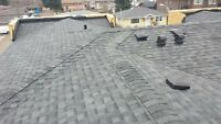 Calgary Re Roofing $239 per 100 square feet. BOOK NOW!