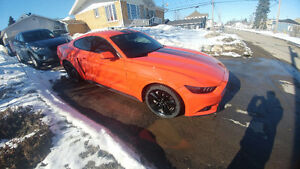2016 Ford Mustang ford performance pack edition limiter