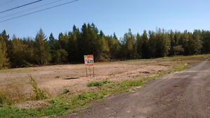 7 + acres for sale, Route 112, Upper Coverdale Road