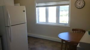 Clean 2 bedroom Main Lever Apartment for rent next to Bull Arm