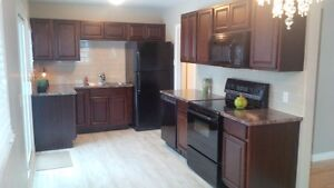 Renovated House $149,000.00 receive $7000.00 credit- Riverview