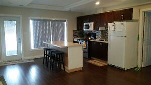 **REDUCED RENT** 3 Bedroom Newly Reno'd Walkout Basement Suite