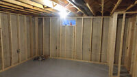 Professional Contractor for renovations/insulation
