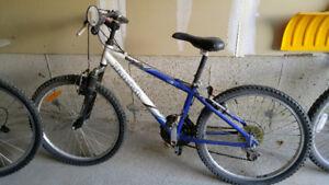 Raleigh bike (smaller frame)