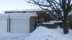 Looking for roommate. Room for rent in Kitchener Kitchener / Waterloo Kitchener Area image 5