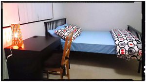 Private room available!! Surry Hills Inner Sydney Preview