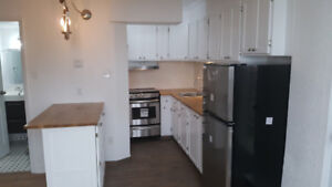 Renovated 1 bedroom or bachelor for March or April. South End